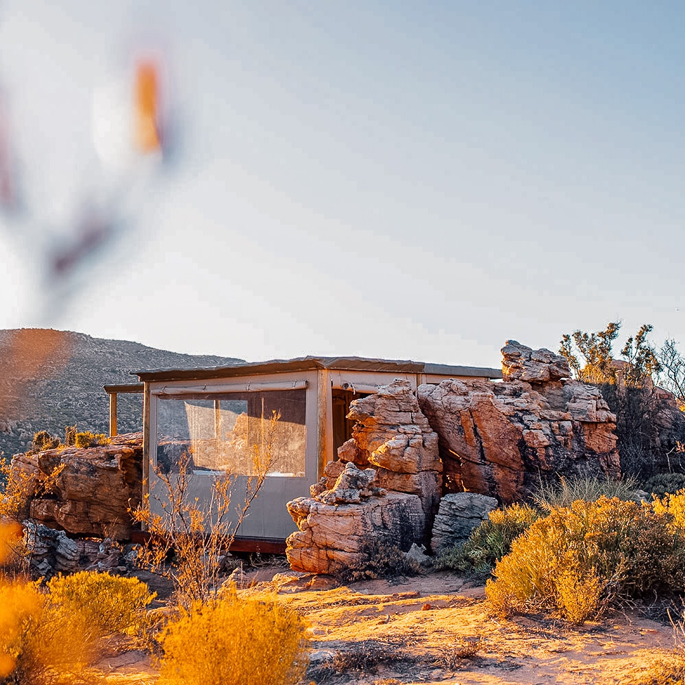 Dassies Spot Tented Chalet